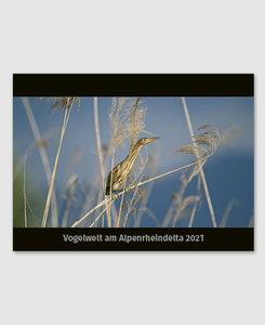 Vogelwelt am Alpenrheindelta 2021